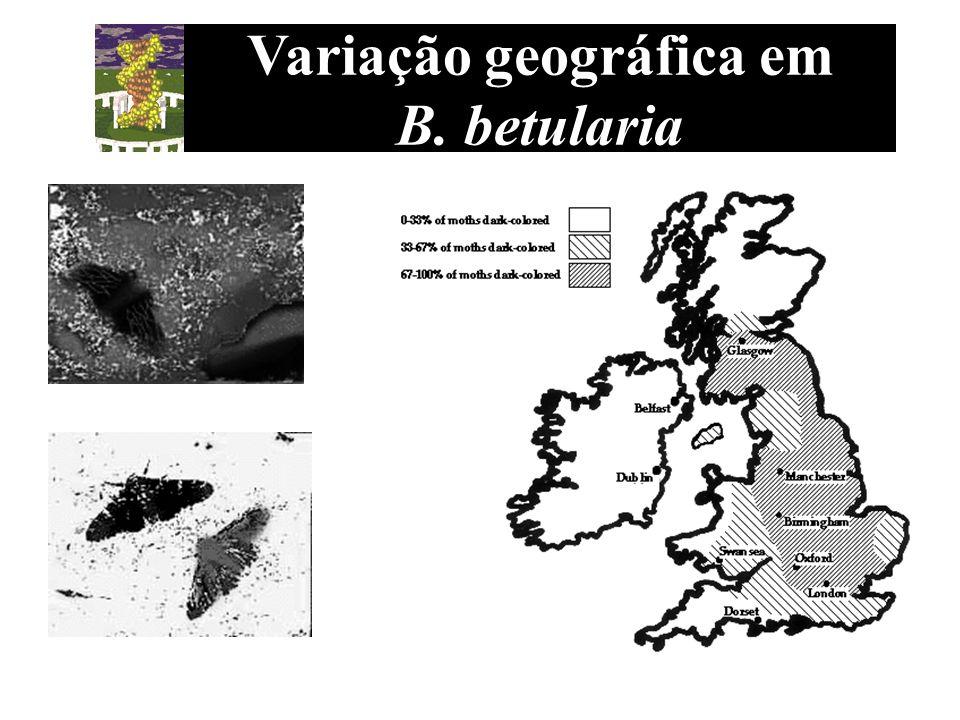 Variação geográfica em B. betularia