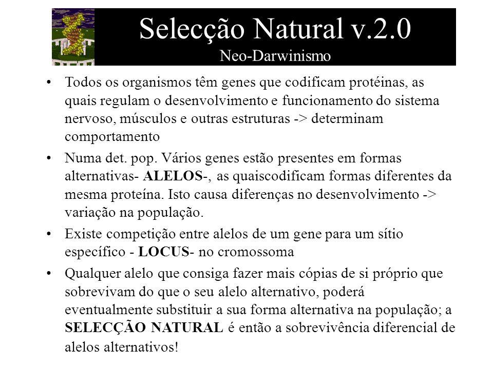 Selecção Natural v.2.0 Neo-Darwinismo Todos os organismos têm genes que codificam protéinas, as quais regulam o desenvolvimento e funcionamento do sis
