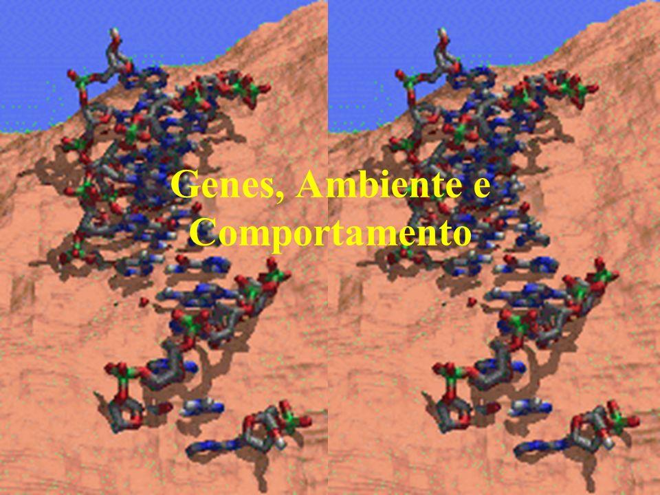 Genes, Ambiente e Comportamento