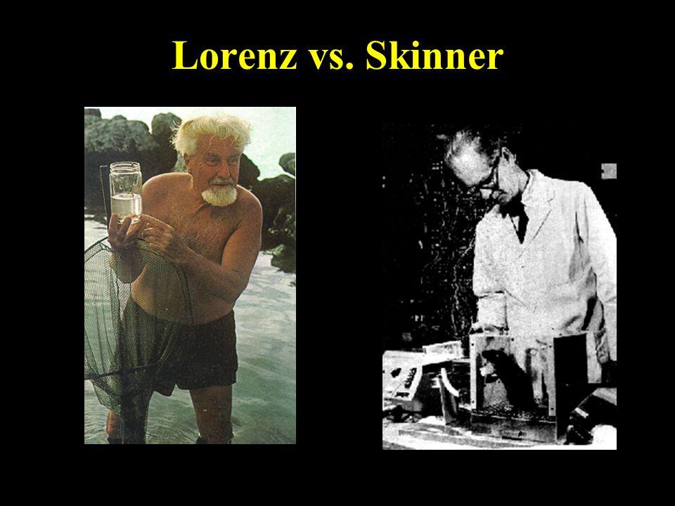 Lorenz vs. Skinner