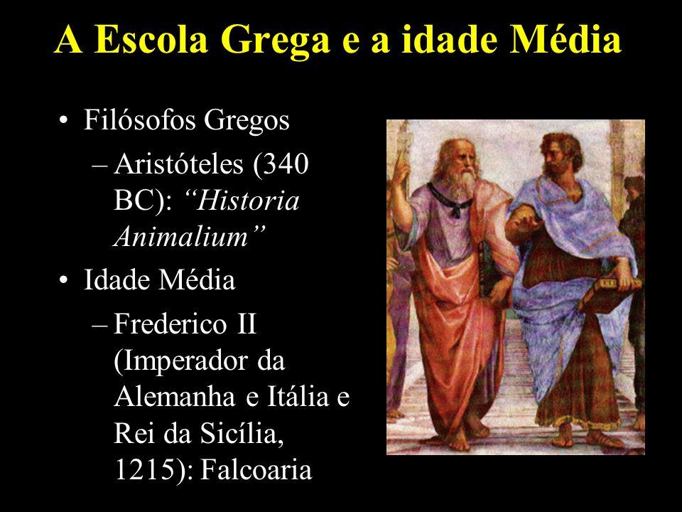 A Escola Grega e a idade Média Filósofos Gregos –Aristóteles (340 BC): Historia Animalium Idade Média –Frederico II (Imperador da Alemanha e Itália e Rei da Sicília, 1215): Falcoaria