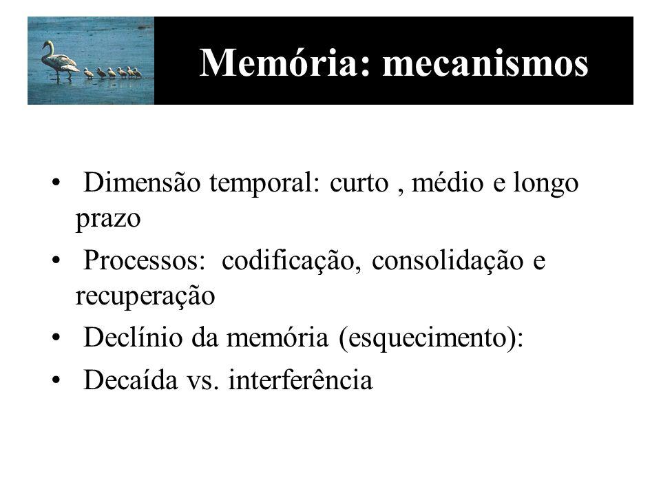 Memória: mecanismos Dimensão temporal: curto, médio e longo prazo Processos: codificação, consolidação e recuperação Declínio da memória (esquecimento