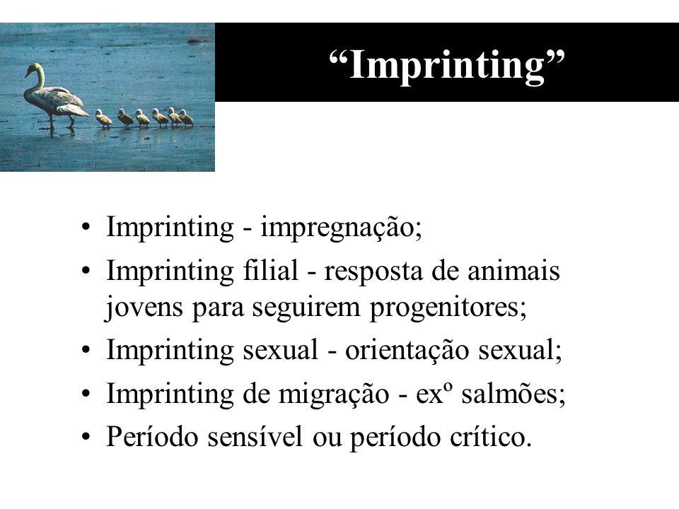 Imprinting Imprinting - impregnação; Imprinting filial - resposta de animais jovens para seguirem progenitores; Imprinting sexual - orientação sexual;