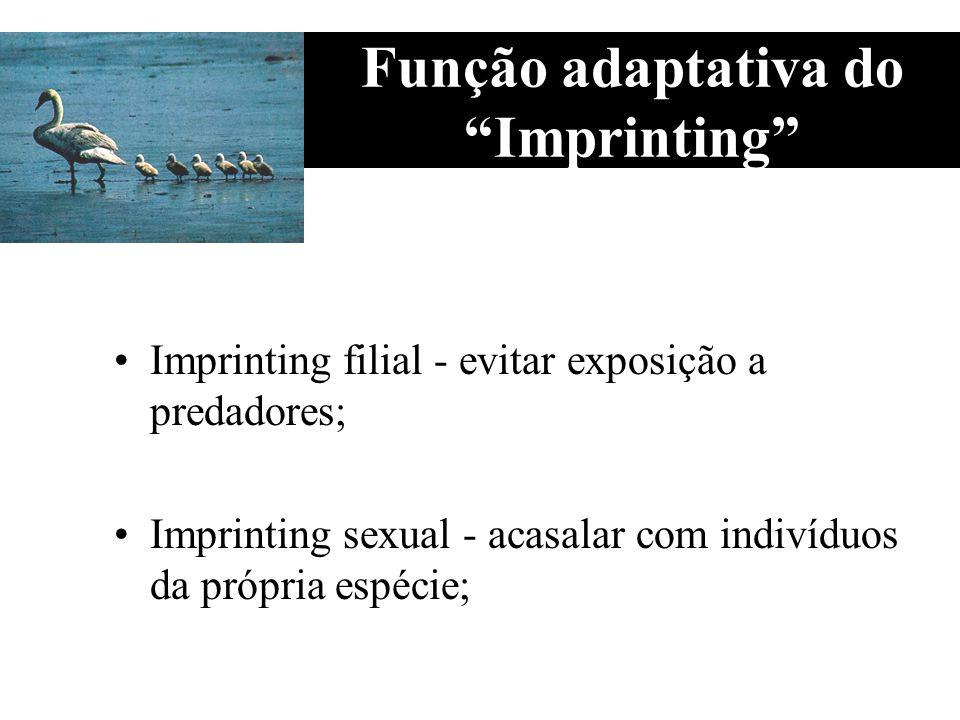 Função adaptativa do Imprinting Imprinting filial - evitar exposição a predadores; Imprinting sexual - acasalar com indivíduos da própria espécie;