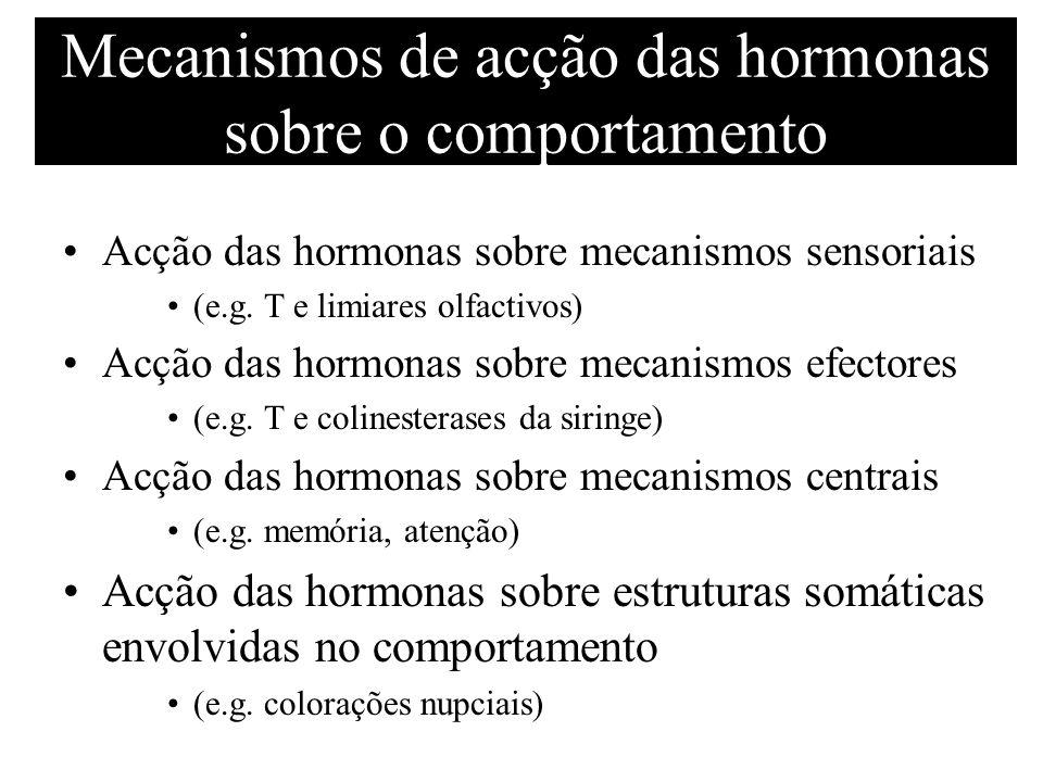 Mecanismos de acção das hormonas sobre o comportamento Acção das hormonas sobre mecanismos sensoriais (e.g. T e limiares olfactivos) Acção das hormona