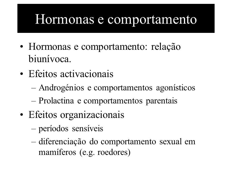 Hormonas e comportamento Hormonas e comportamento: relação biunívoca. Efeitos activacionais –Androgénios e comportamentos agonísticos –Prolactina e co