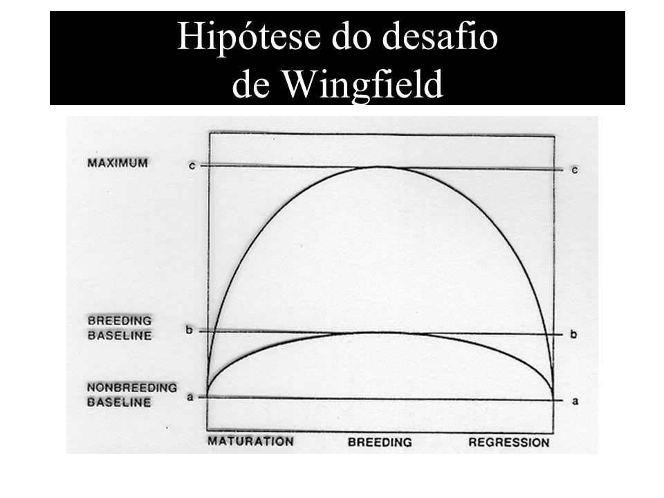 Hipótese do desafio de Wingfield