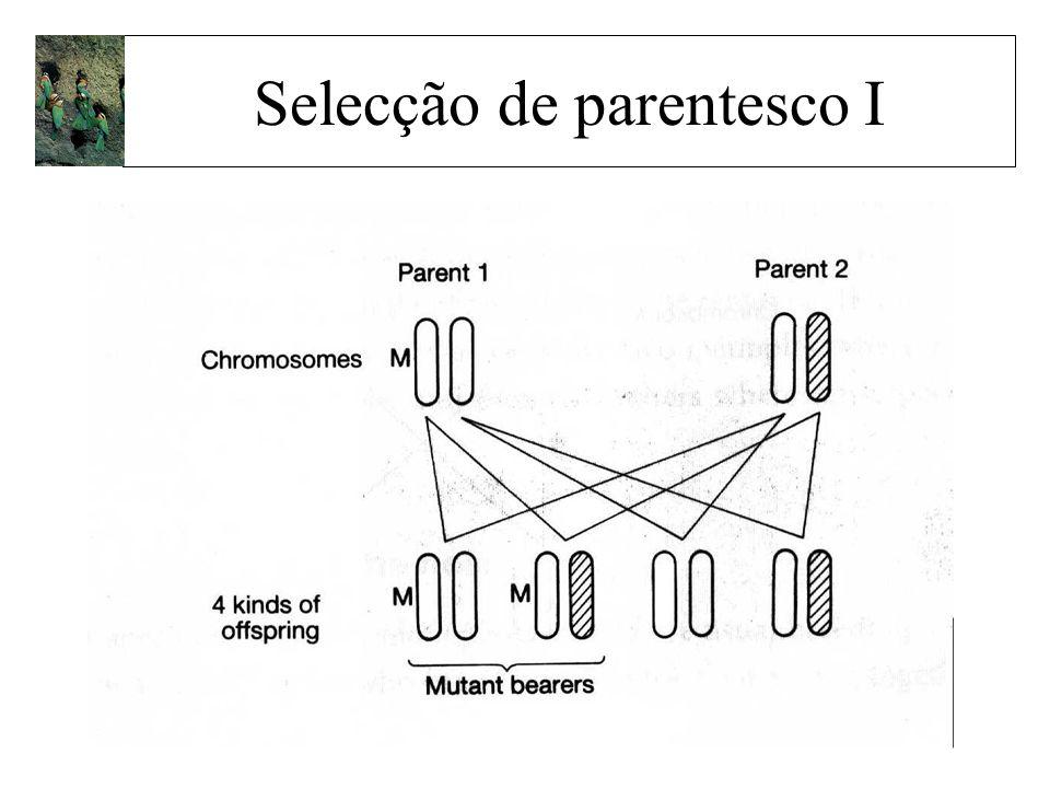 Selecção de parentesco I