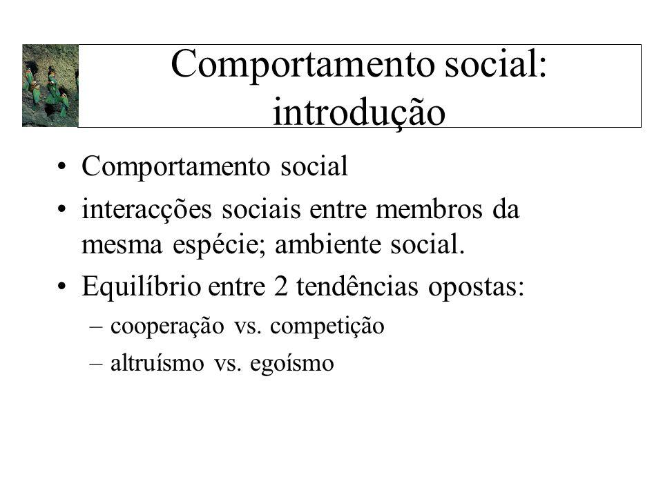 Comportamento social: introdução Comportamento social interacções sociais entre membros da mesma espécie; ambiente social. Equilíbrio entre 2 tendênci