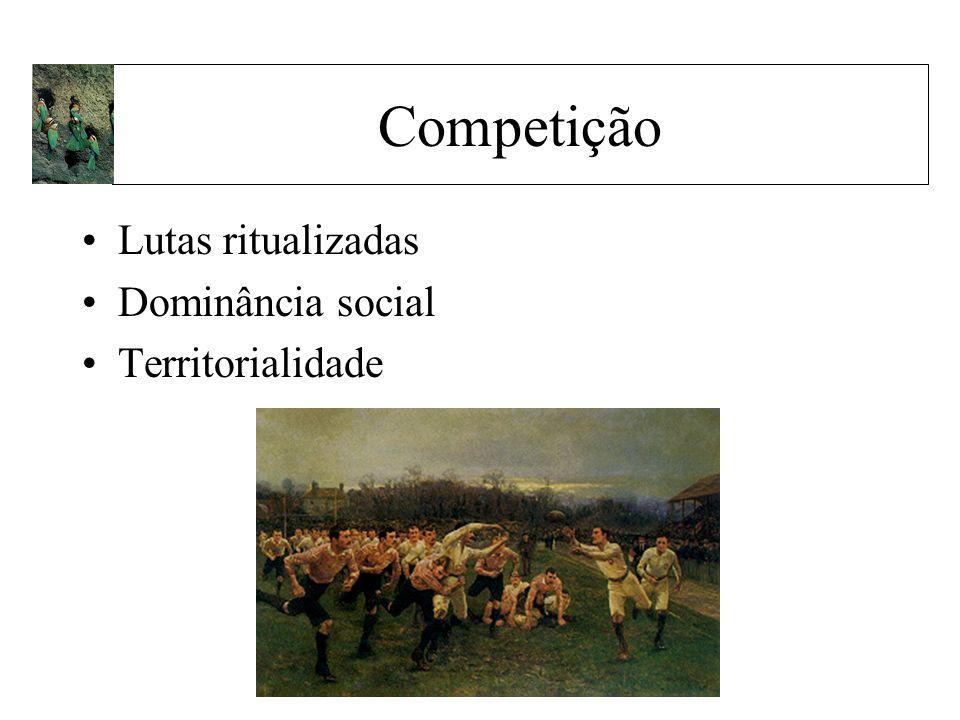 Competição Lutas ritualizadas Dominância social Territorialidade