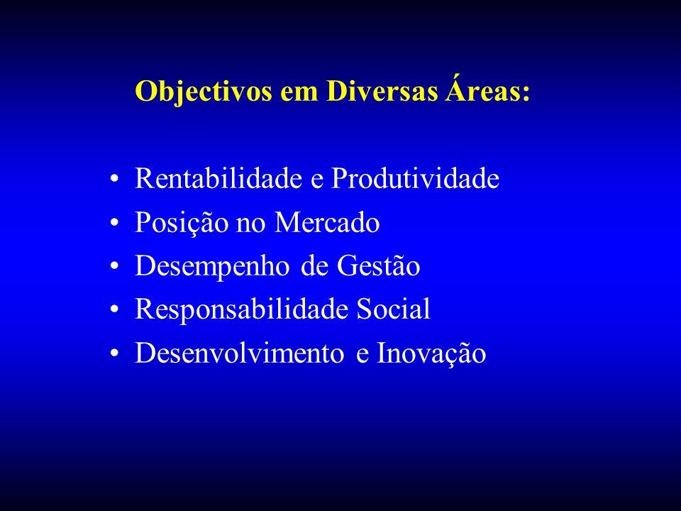 Objectivos em Diversas Áreas: Rentabilidade e Produtividade Posição no Mercado Desempenho de Gestão Responsabilidade Social Desenvolvimento e Inovação
