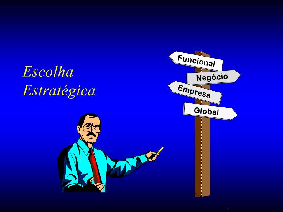 . Escolha Estratégica Funcional Negócio Empresa Global