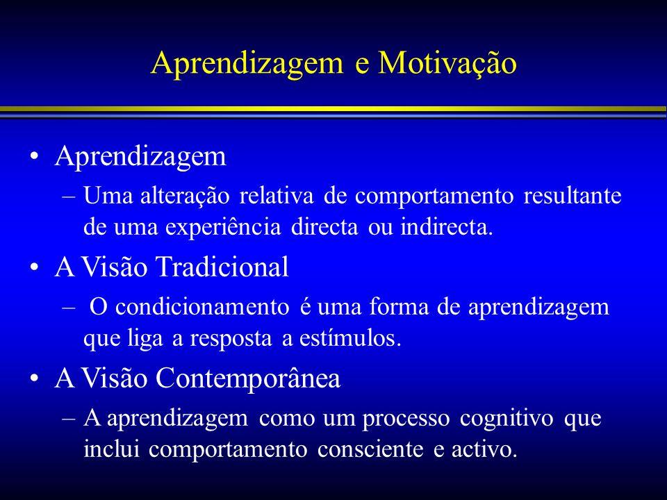 Aprendizagem e Motivação Aprendizagem –Uma alteração relativa de comportamento resultante de uma experiência directa ou indirecta. A Visão Tradicional