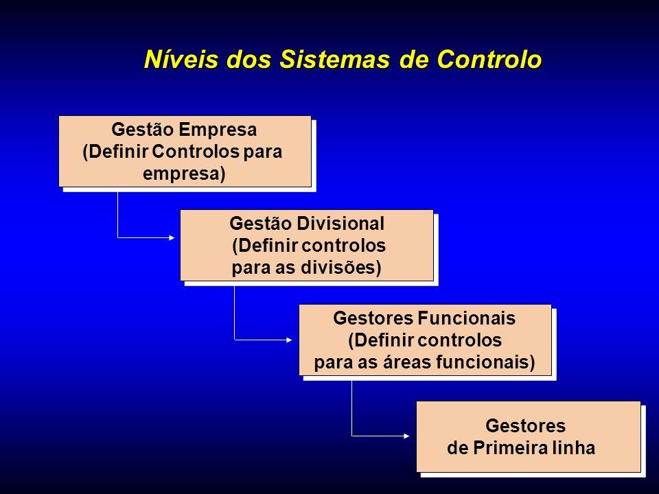 Gestão Empresa (Definir Controlos para empresa) Gestão Empresa (Definir Controlos para empresa) Gestão Divisional (Definir controlos para as divisões)