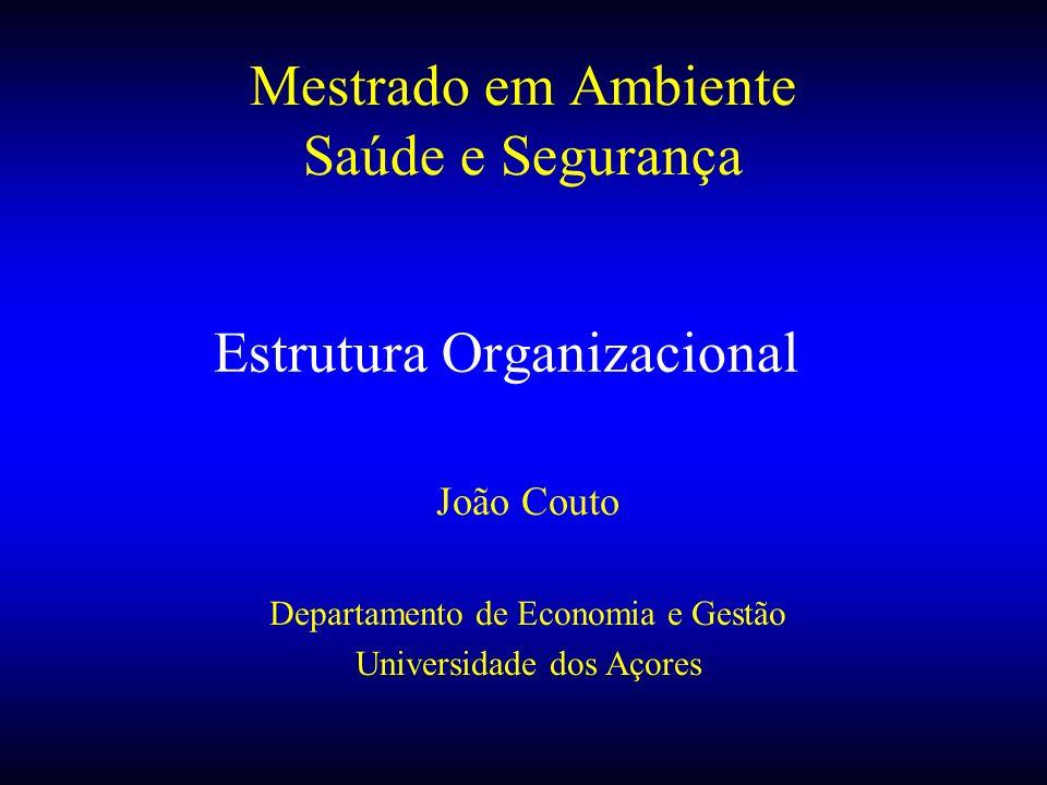 Estrutura Organizacional João Couto Departamento de Economia e Gestão Universidade dos Açores Mestrado em Ambiente Saúde e Segurança