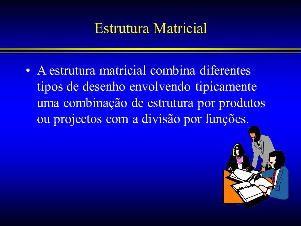 Estrutura Matricial A estrutura matricial combina diferentes tipos de desenho envolvendo tipicamente uma combinação de estrutura por produtos ou proje