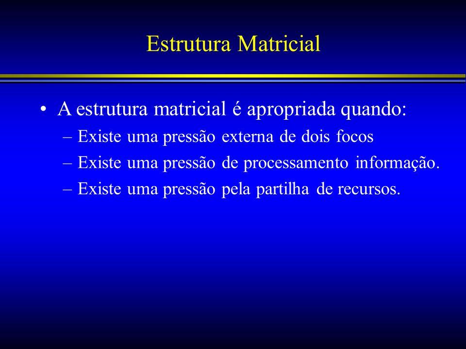 Estrutura Matricial A estrutura matricial é apropriada quando: –Existe uma pressão externa de dois focos –Existe uma pressão de processamento informaç