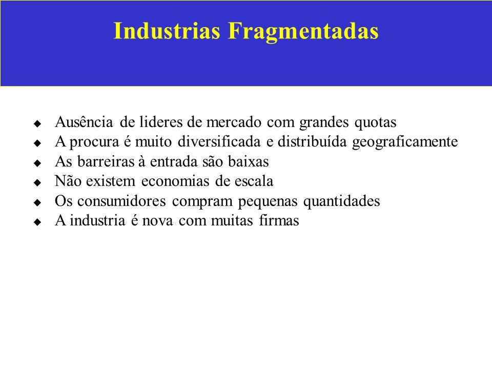 Industrias Fragmentadas Ausência de lideres de mercado com grandes quotas A procura é muito diversificada e distribuída geograficamente As barreiras à