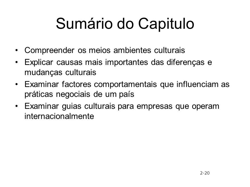Sumário do Capitulo Compreender os meios ambientes culturais Explicar causas mais importantes das diferenças e mudanças culturais Examinar factores co