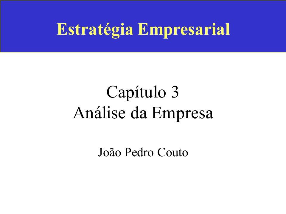 Estratégia Empresarial Capítulo 3 Análise da Empresa João Pedro Couto