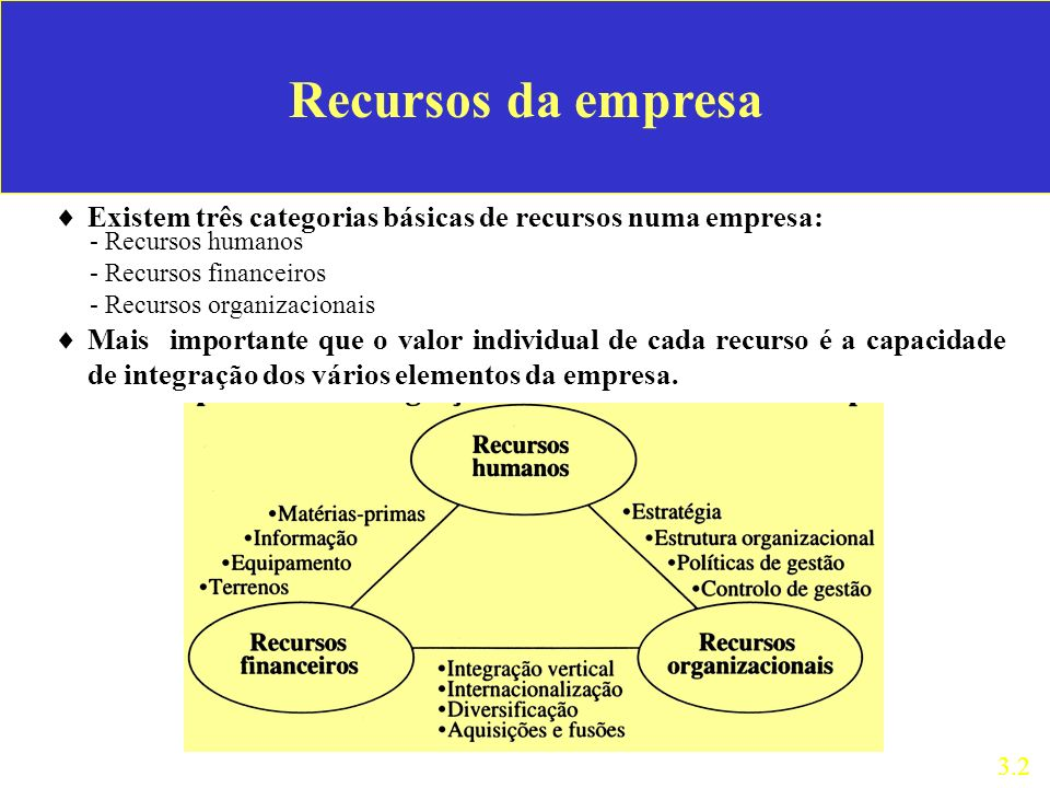 Recursos da empresa Existem três categorias básicas de recursos numa empresa: 3.2 - Recursos humanos - Recursos financeiros - Recursos organizacionais Mais importante que o valor individual de cada recurso é a capacidade de integração dos vários elementos da empresa.