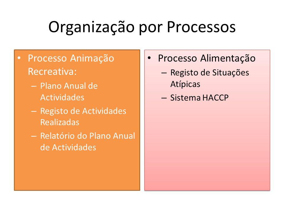 Organização por Processos Processo Animação Recreativa: – Plano Anual de Actividades – Registo de Actividades Realizadas – Relatório do Plano Anual de