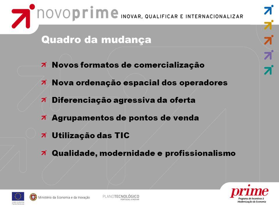 Quadro da mudança Novos formatos de comercialização Nova ordenação espacial dos operadores Diferenciação agressiva da oferta Agrupamentos de pontos de venda Utilização das TIC Qualidade, modernidade e profissionalismo