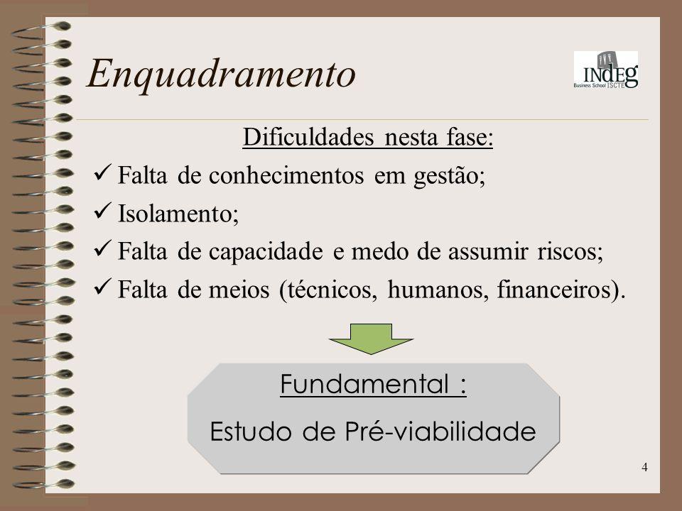 4 Dificuldades nesta fase: Falta de conhecimentos em gestão; Isolamento; Falta de capacidade e medo de assumir riscos; Falta de meios (técnicos, humanos, financeiros).
