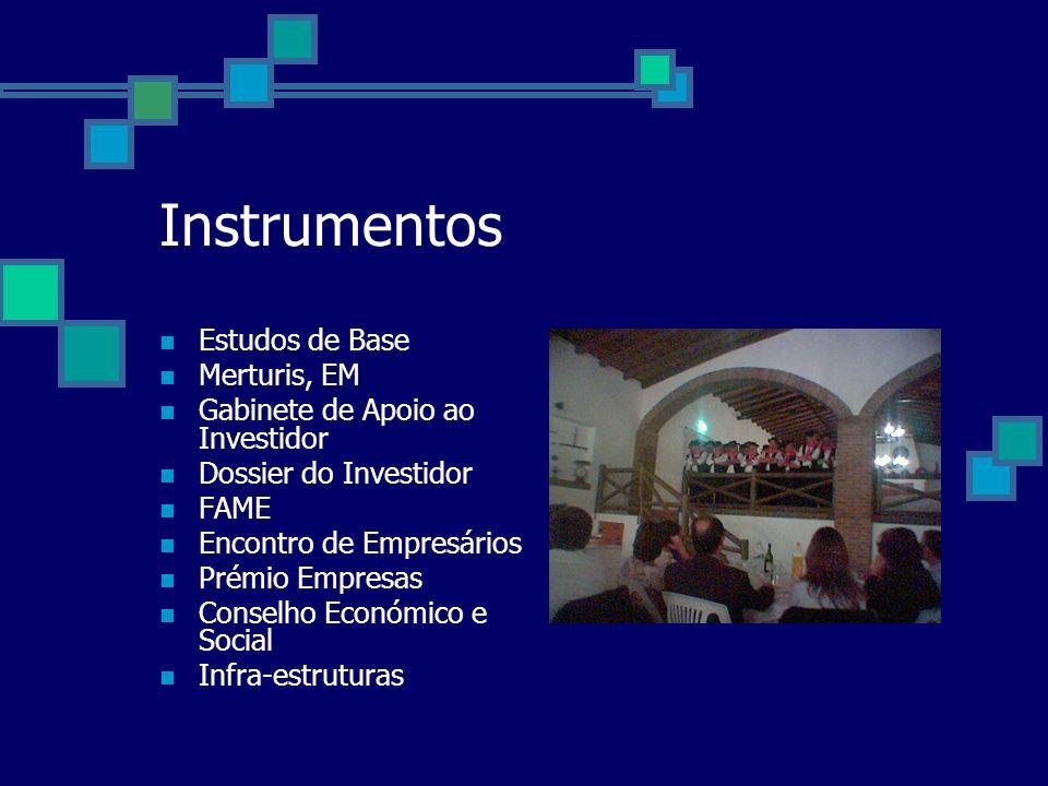 Instrumentos Estudos de Base Merturis, EM Gabinete de Apoio ao Investidor Dossier do Investidor FAME Encontro de Empresários Prémio Empresas Conselho Económico e Social Infra-estruturas