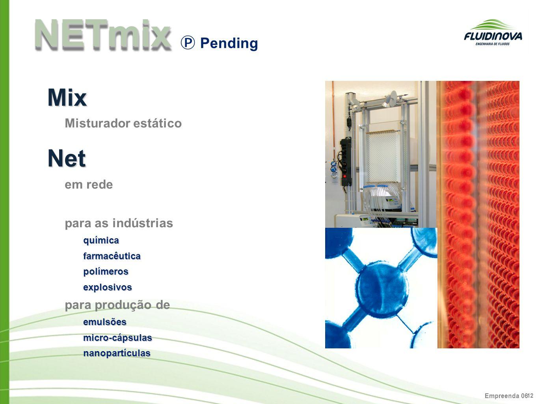 Empreenda 06 12 NETmixNETmix Mix Misturador estáticoNet em rede para as indústriasquímicafarmacêuticapolímerosexplosivos para produção deemulsõesmicro
