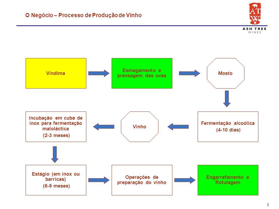 16 2 Mercado VinhoMeu 2.1Determinação do Mercado 2.2Evolução do Mercado 2.3Factores Críticos de Sucesso