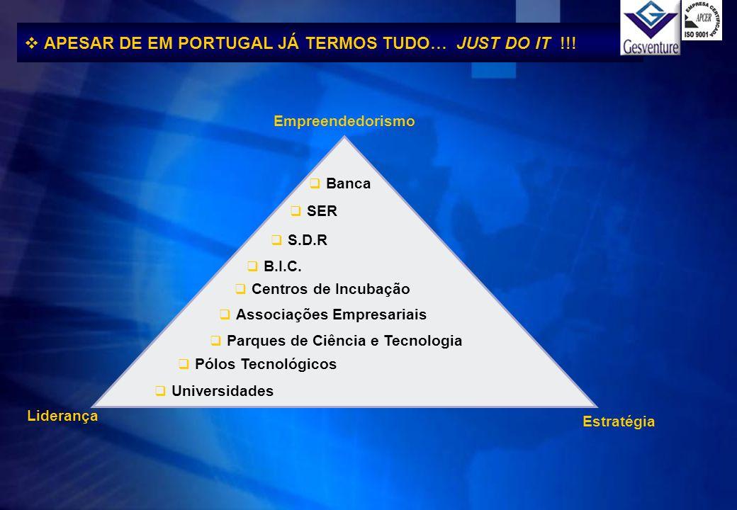 Empreendedorismo S.D.R SER Banca Universidades Centros de Incubação Associações Empresariais Parques de Ciência e Tecnologia Pólos Tecnológicos B.I.C.