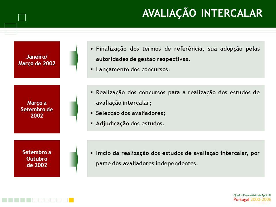 Finalização dos termos de referência, sua adopção pelas autoridades de gestão respectivas.