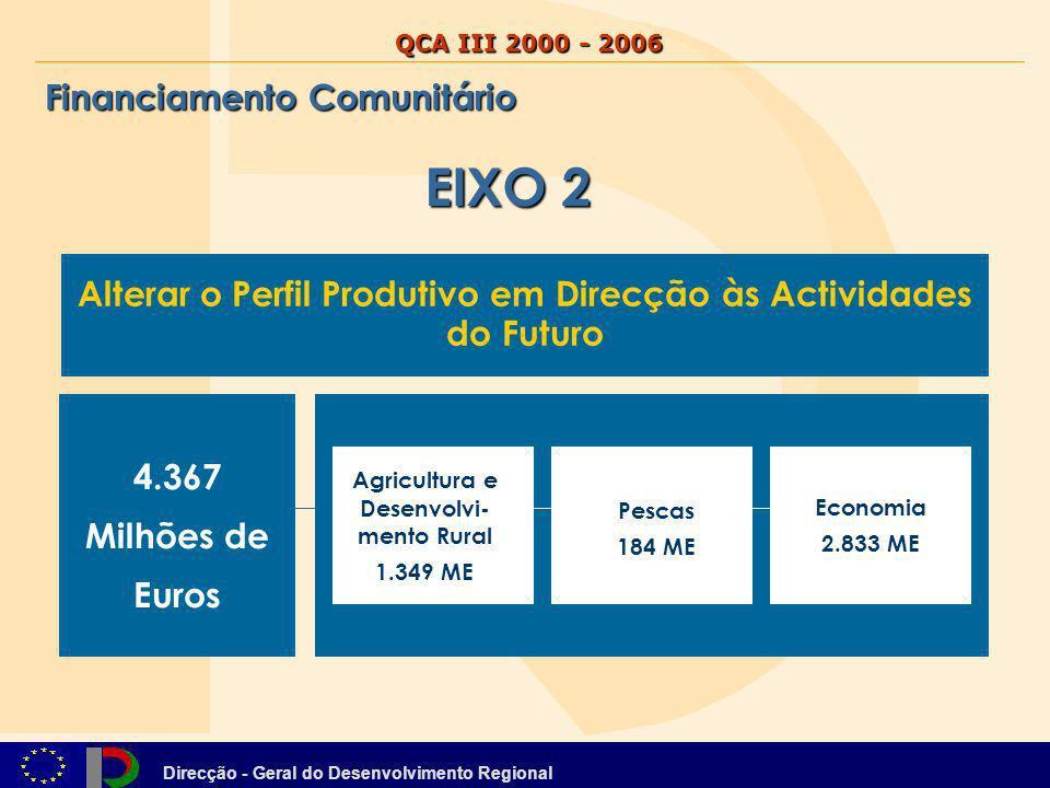 Direcção - Geral do Desenvolvimento Regional QCA III 2000 - 2006 Financiamento Comunitário Alterar o Perfil Produtivo em Direcção às Actividades do Fu