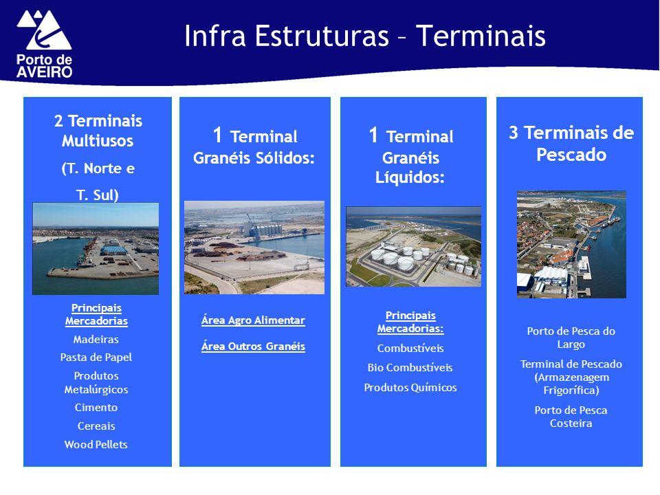 1 Terminal Granéis Líquidos: Principais Mercadorias Madeiras Pasta de Papel Produtos Metalúrgicos Cimento Cereais Wood Pellets 2 Terminais Multiusos (