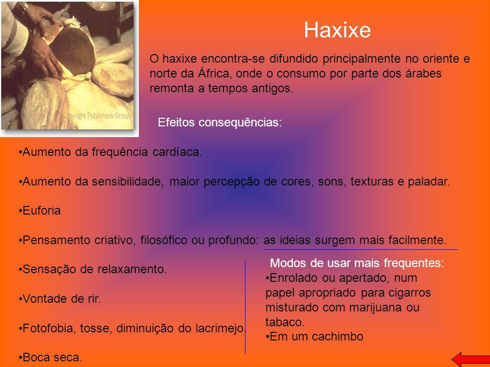 Haxixe O haxixe encontra-se difundido principalmente no oriente e norte da África, onde o consumo por parte dos árabes remonta a tempos antigos. Efeit