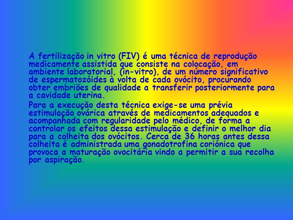 A fertilização in vitro (FIV) é uma técnica de reprodução medicamente assistida que consiste na colocação, em ambiente laboratorial, (in-vitro), de um