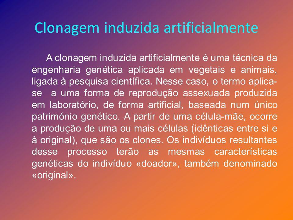 Clonagem induzida artificialmente A clonagem induzida artificialmente é uma técnica da engenharia genética aplicada em vegetais e animais, ligada à pe