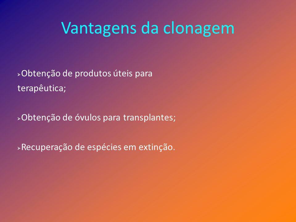 Vantagens da clonagem Obtenção de produtos úteis para terapêutica; Obtenção de óvulos para transplantes; Recuperação de espécies em extinção.