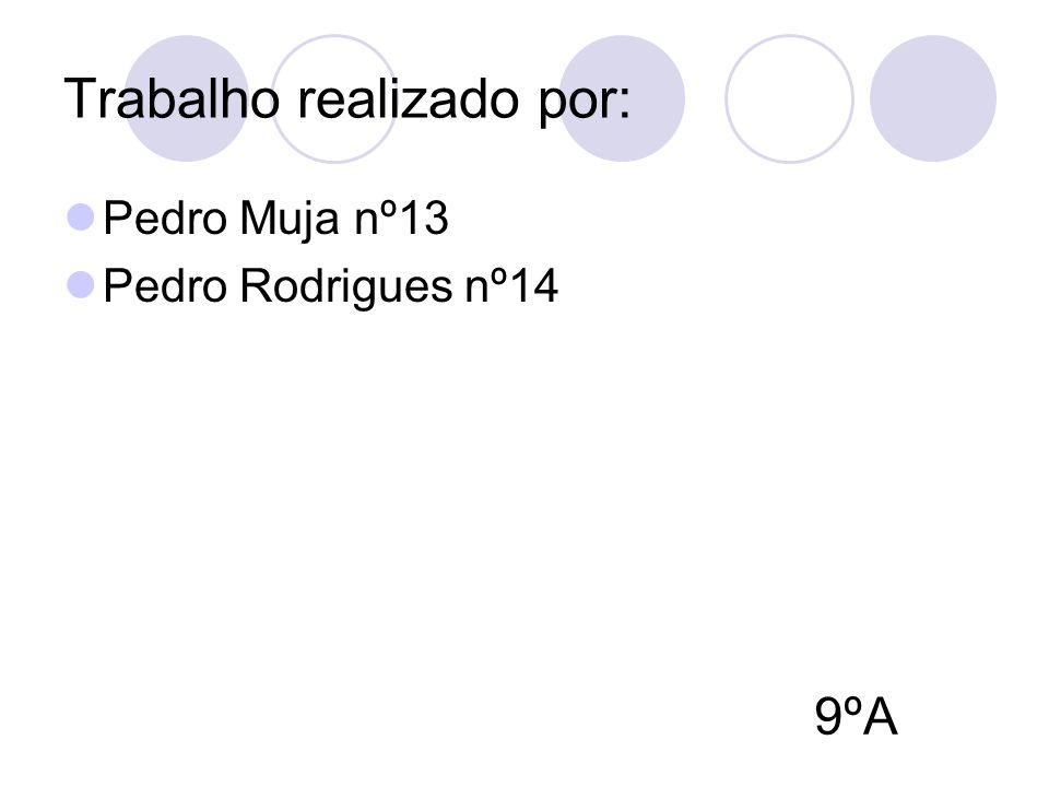 Trabalho realizado por: Pedro Muja nº13 Pedro Rodrigues nº14 9ºA