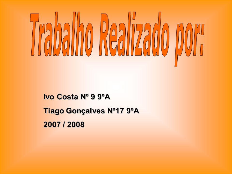 Ivo Costa Nº 9 9ºA Tiago Gonçalves Nº17 9ºA 2007 / 2008