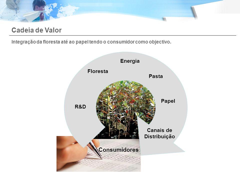 Floresta Pasta Papel Canais de Distribuição Consumidores Cadeia de Valor Integração da floresta até ao papel tendo o consumidor como objectivo. R&D En