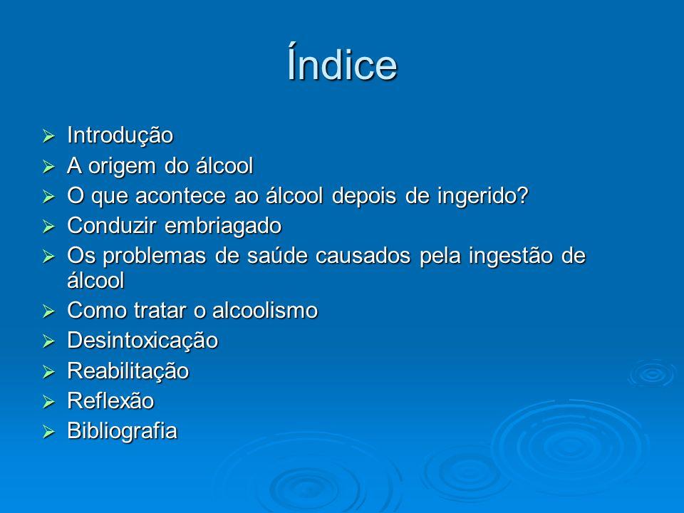 Índice Introdução Introdução A origem do álcool A origem do álcool O que acontece ao álcool depois de ingerido? O que acontece ao álcool depois de ing