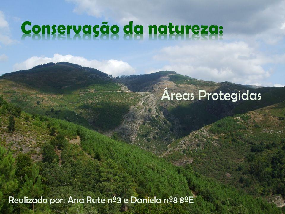 Áreas Protegidas Realizado por: Ana Rute nº3 e Daniela nº8 8ºE