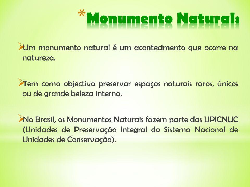 Um monumento natural é um acontecimento que ocorre na natureza. Tem como objectivo preservar espaços naturais raros, únicos ou de grande beleza intern