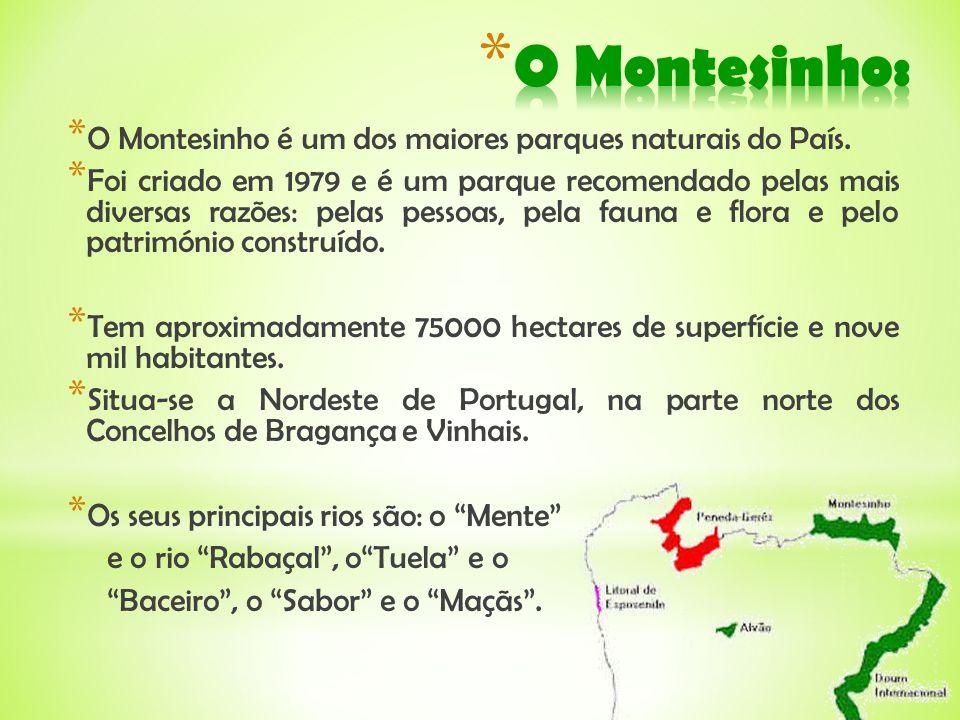 * O Montesinho é um dos maiores parques naturais do País. * Foi criado em 1979 e é um parque recomendado pelas mais diversas razões: pelas pessoas, pe