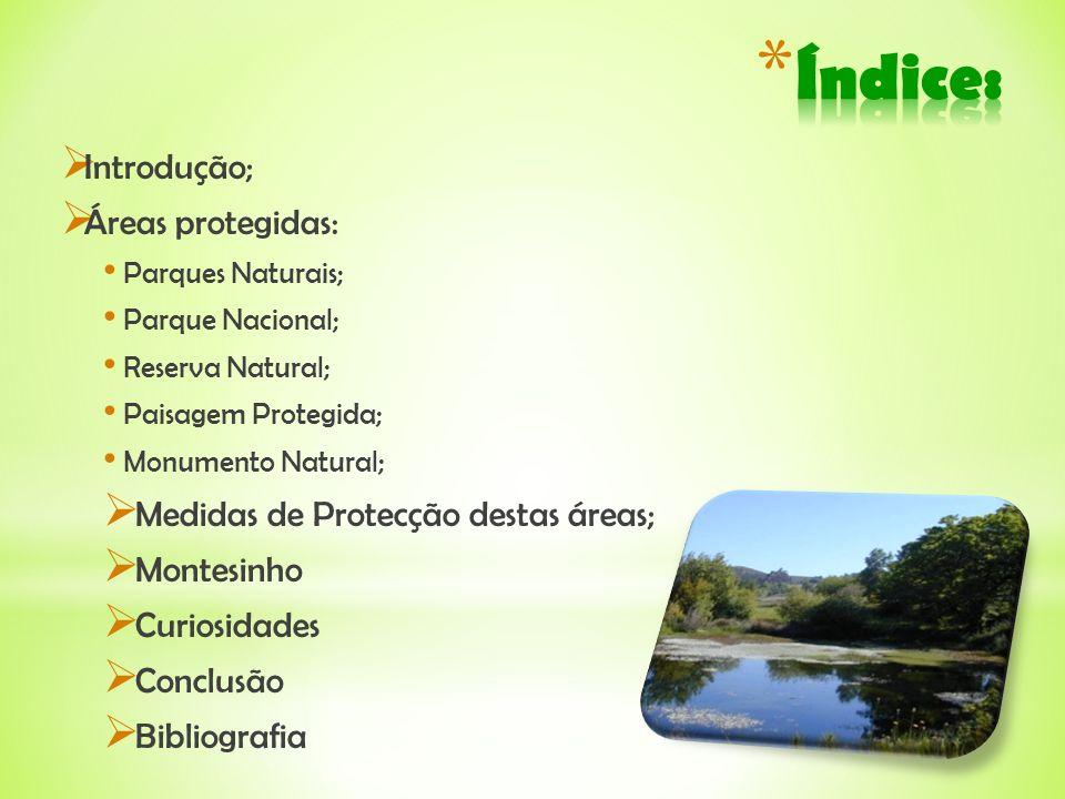 Introdução; Áreas protegidas: Parques Naturais; Parque Nacional; Reserva Natural; Paisagem Protegida; Monumento Natural; Medidas de Protecção destas á