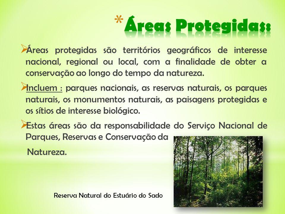 Áreas protegidas são territórios geográficos de interesse nacional, regional ou local, com a finalidade de obter a conservação ao longo do tempo da na