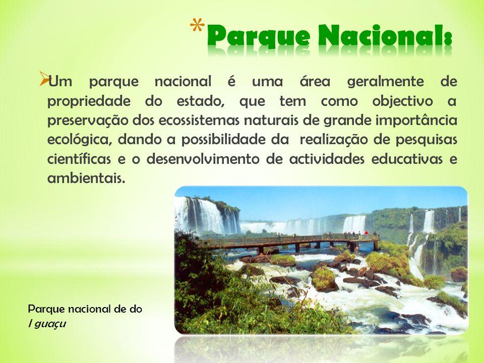 Um parque nacional é uma área geralmente de propriedade do estado, que tem como objectivo a preservação dos ecossistemas naturais de grande importânci