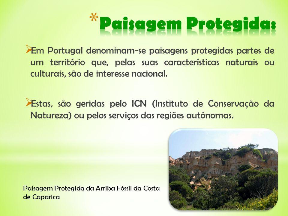 Em Portugal denominam-se paisagens protegidas partes de um território que, pelas suas características naturais ou culturais, são de interesse nacional